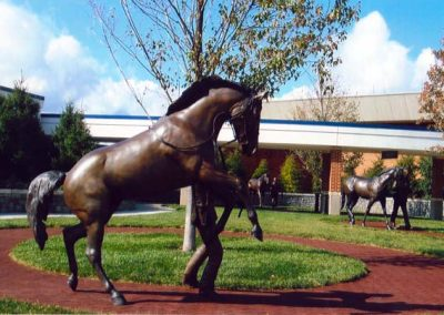 thoroughbred_park_06-lg